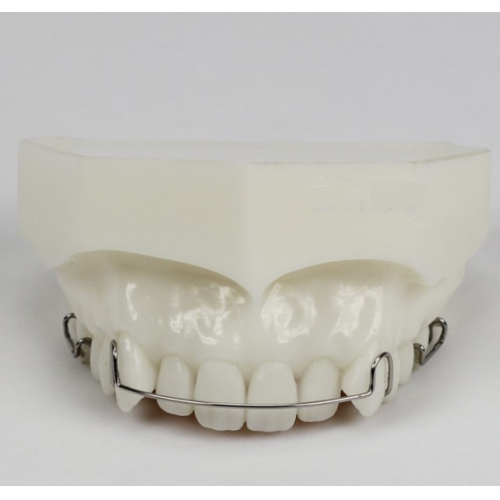 Orthodontic Demonstration Model for Maintenance M3007