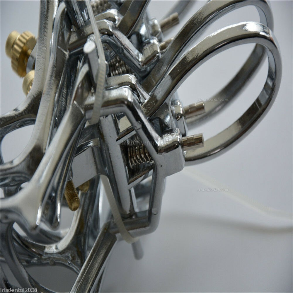 5Pcs Dental Zinc Alloy Spring Articulator Denture Articulator