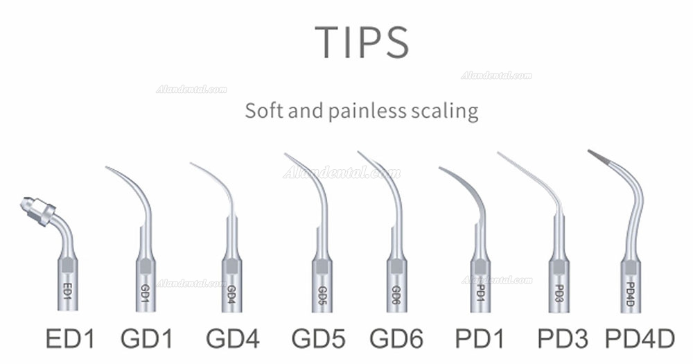 Woodpecker® DTE D7 Dental Ultrasonic Scaler SATELEC Compatible FDA/CE