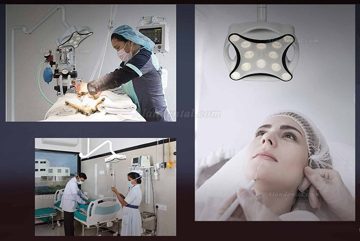Micare JD1700L LED Dental Surgical Lamp Shadowless Light Operation Lamp Ceiling Mounted