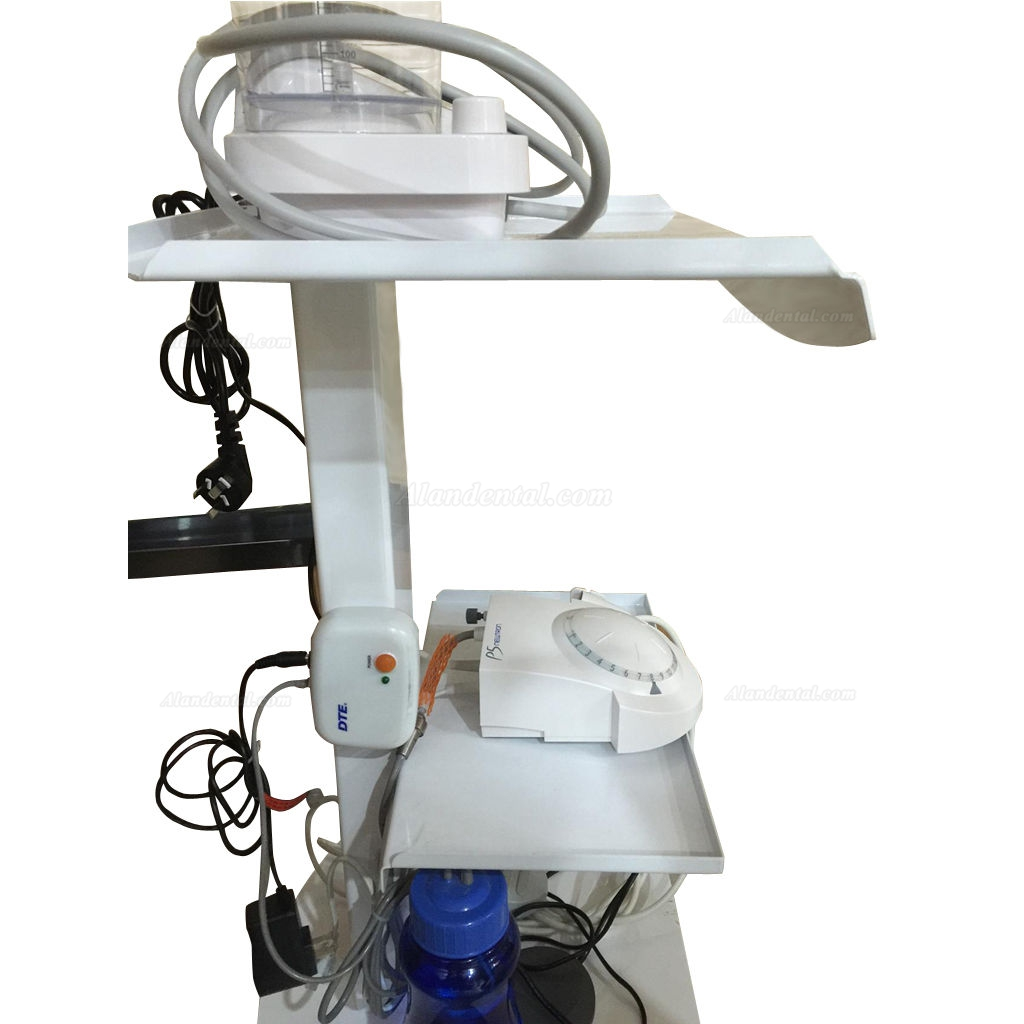 Medical Steel Cart Trolley Doctor Dentist Trolly Spa Salon Equipment All Purpose